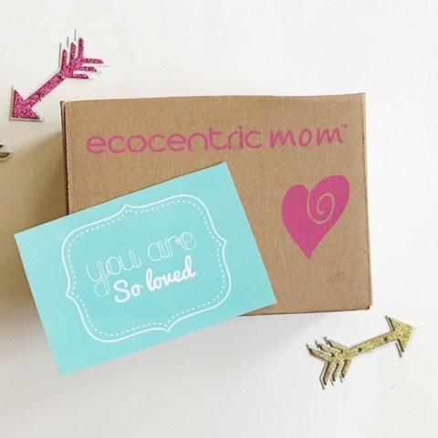Ecocentric-Mom-Valentines-Box.jpg